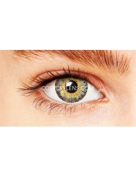 Natural Elegant Grey Coloured Contact Lenses 14.5mm